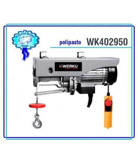 Polipasto Cable 100kg 200W WK 402950