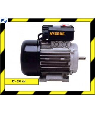 MOTOR ELECTRICO - AY - 750 MN - AYERBE